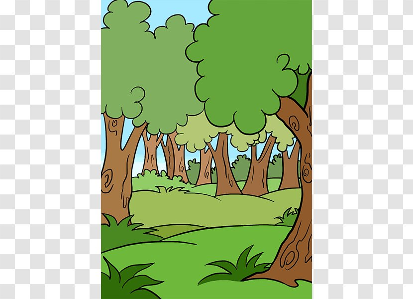 Drawing Cartoon Watercolor Painting Forest Howto Tropical Rainforest Transparent Png