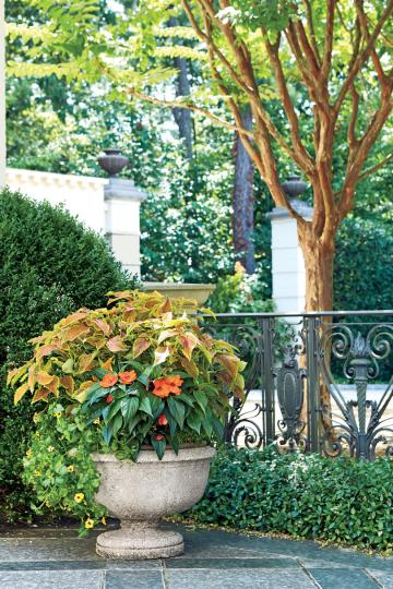 Spectacular Container Gardening Ideas   Southern Living Orange and Green Container Garden