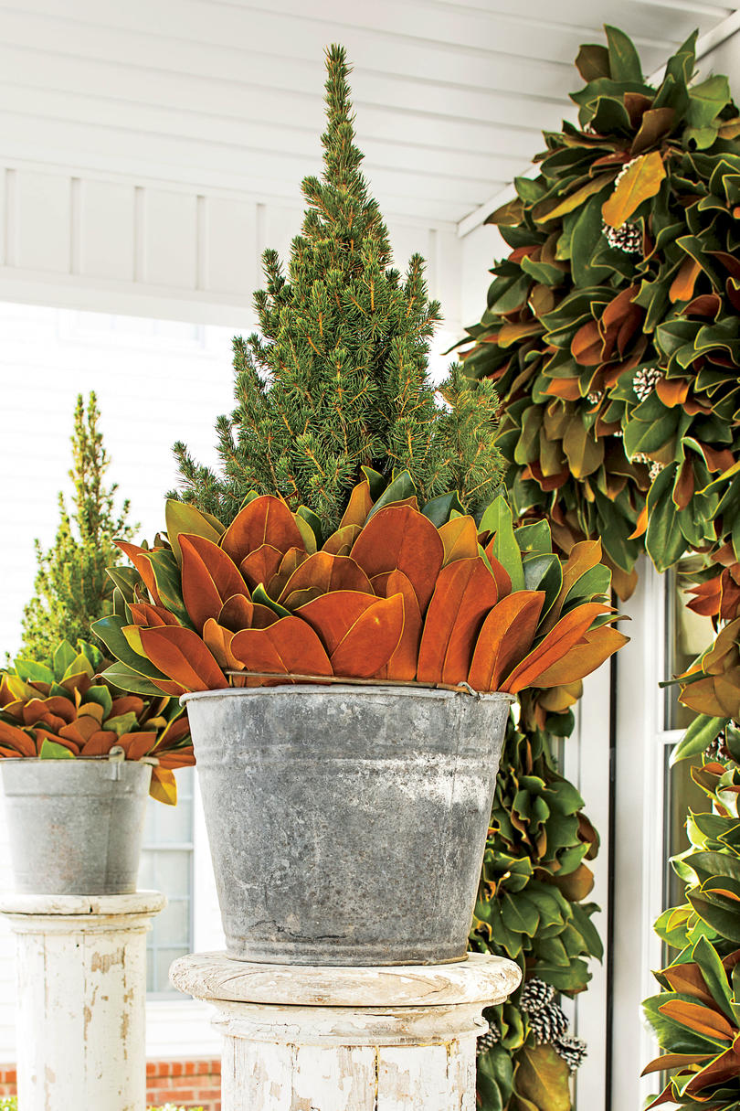 10 Ways to Decorate with Magnolia this Christmas   Southern Living Magnolia Leaves in Bucket Outdoors
