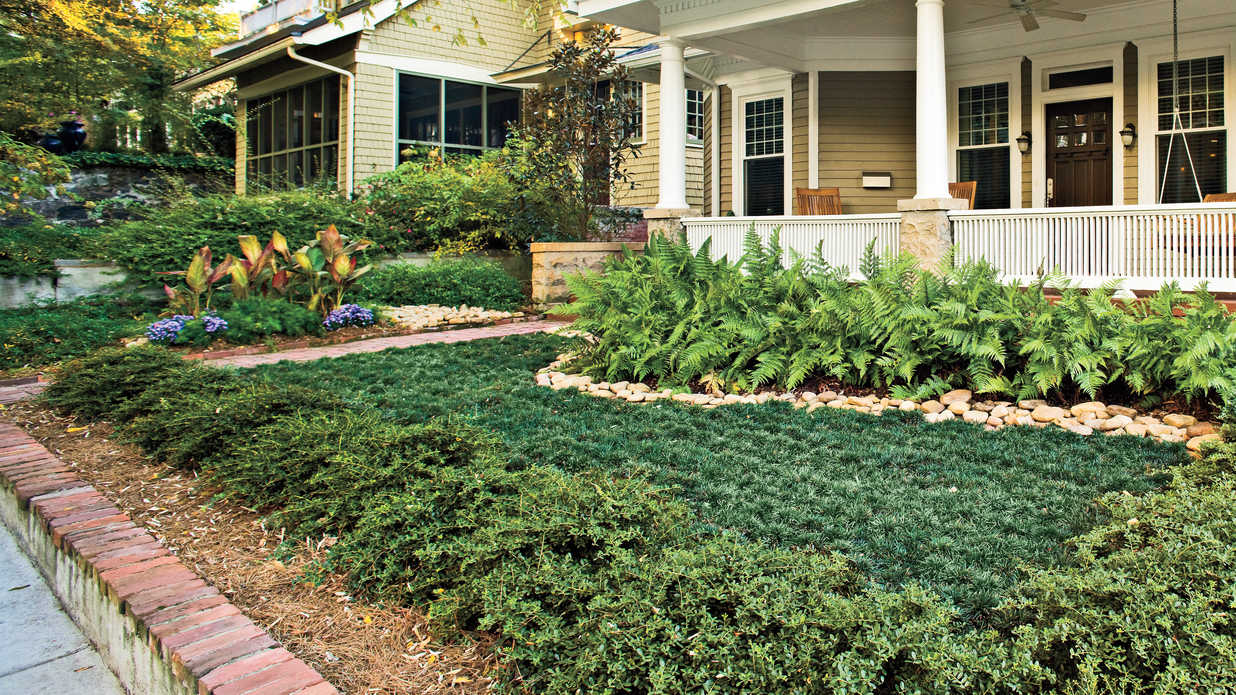 Easy, No Mow Lawns - Southern Living on Backyard Ideas Without Grass  id=67661