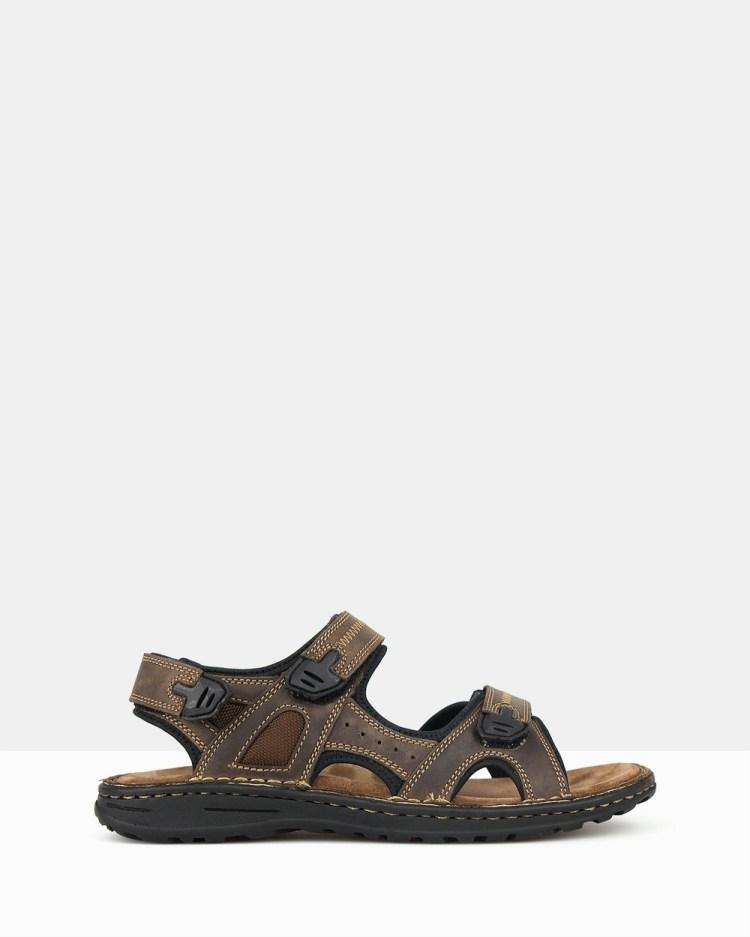 Airflex Robert Sports Sandals Casual Shoes Brown
