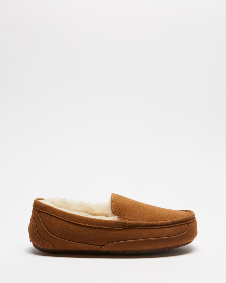Staple Superior Roger Slippers & Accessories Tan