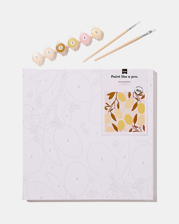 Typo Stretch Canvas Paint by Numbers 30 x Accessories Lemons