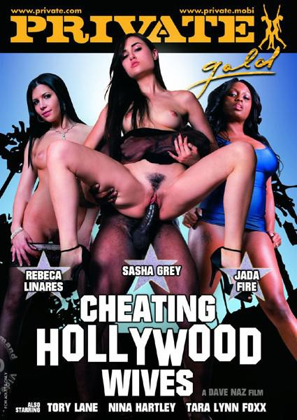 Cheating Hollywood Wives Private Gold 107 Box Cover