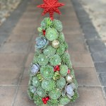 16 Inch Succulent Christmas Tree