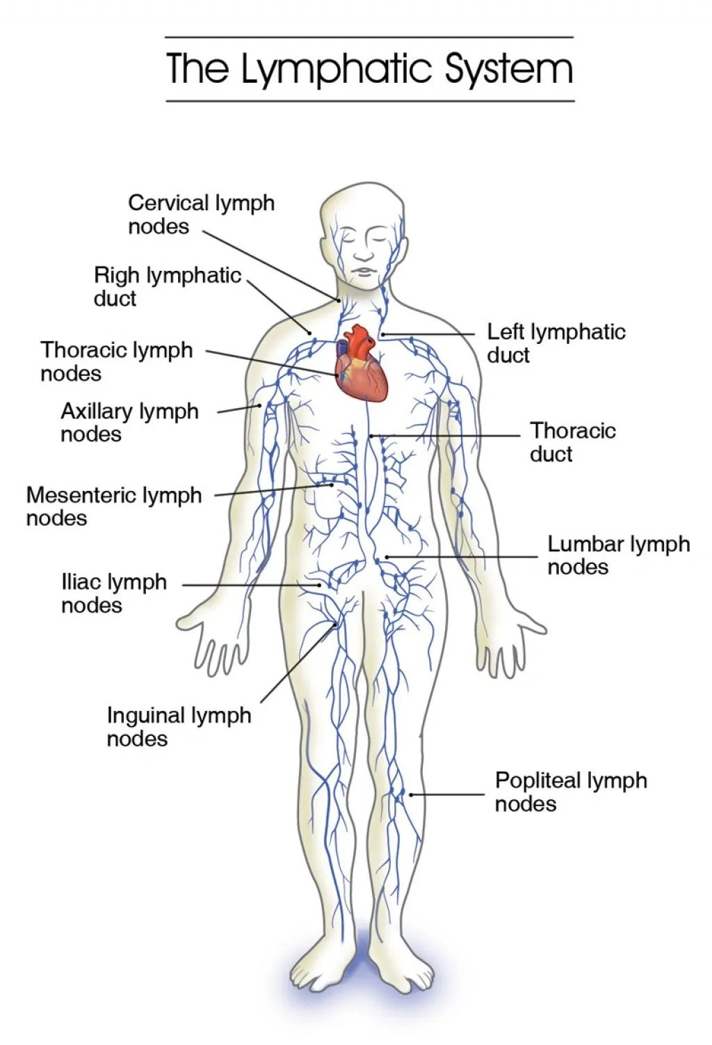 West Valley Lymphatic Care