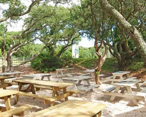 Peppertree Atlantic Beach Nc
