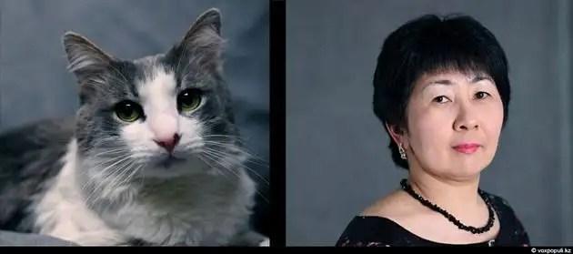 dgpl00524 - Tu mascota se parece a ti, ya sea un perro o un gato