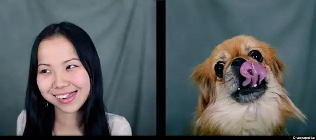 dgpl00523 - Tu mascota se parece a ti, ya sea un perro o un gato