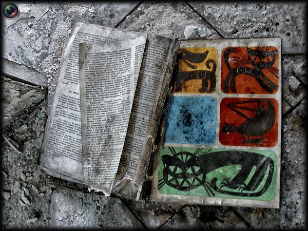 chernobyl27 - Chernobyl 25 años después