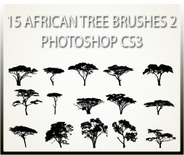 15 African Tree Brushes 2 CS3 By Charfade On DeviantArt