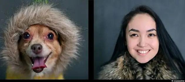 dgpl00526 - Tu mascota se parece a ti, ya sea un perro o un gato