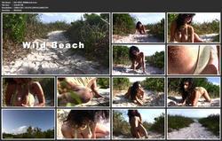 th 019449675 DM V093 WildBeach.mov 123 89lo - Denise Milani - MegaPack 137 Videos
