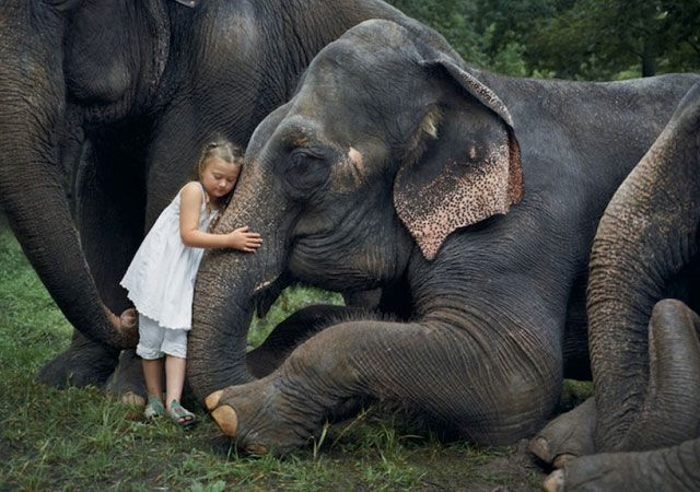 robinschwartzelefantes - La fotógrafa Robin Schwartz muestra la conexión de su hija con animales de todo tipo