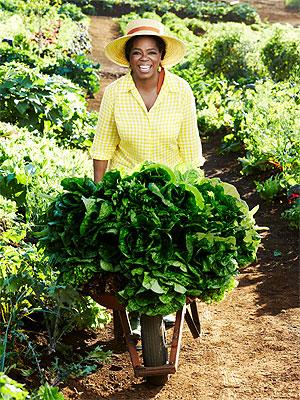 Oprah Winfrey's Maui Farm House Pictures
