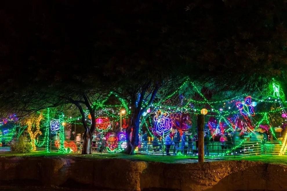 Zoo Lights Tucson