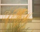 Summer Breeze - 8x10 Retro Polaroid Fine Art Print - Seagrass Beach House Bungalow - jenaardell