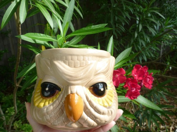 Vintage Wise Owl Planter For a Lovely Dish Garden - ViperVintage