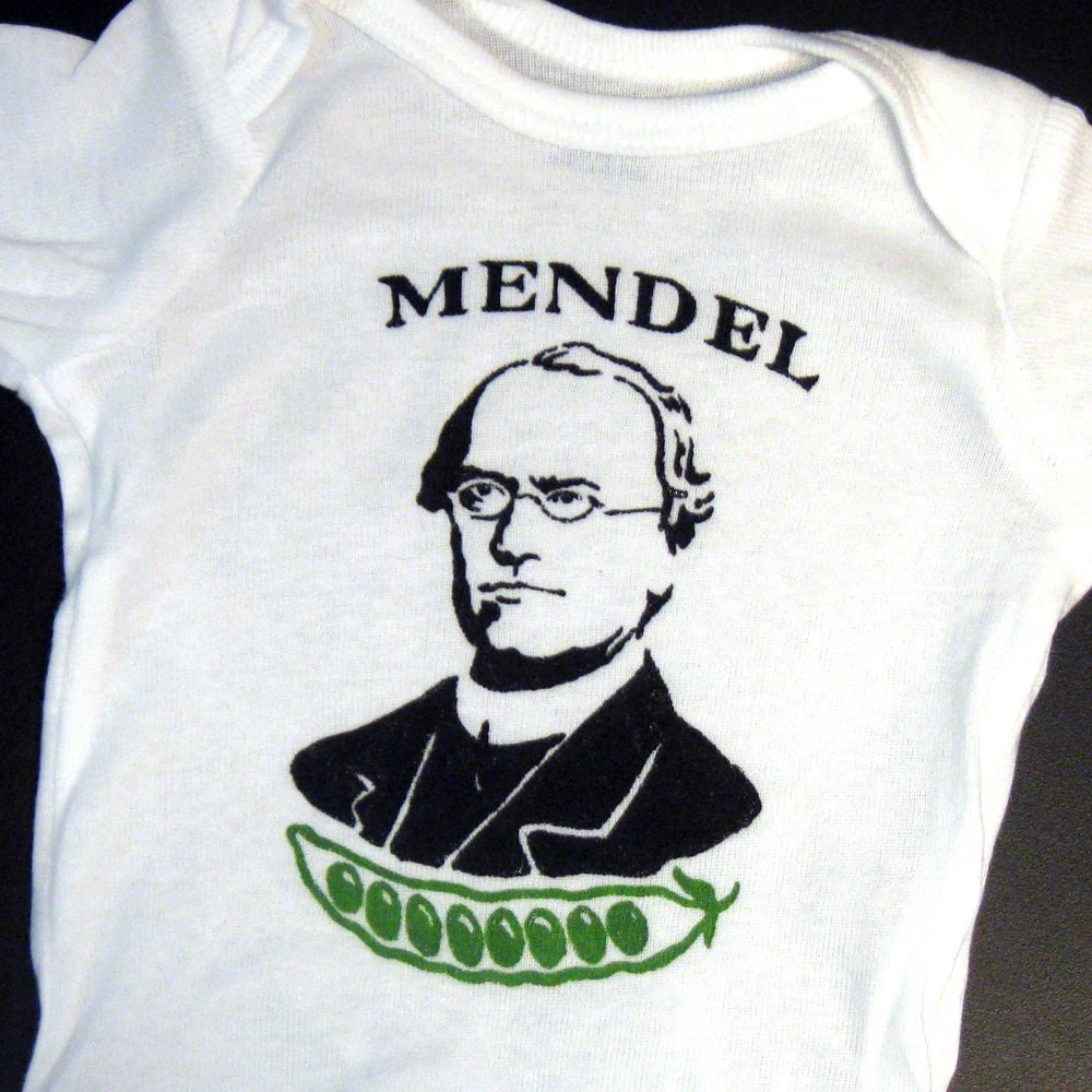 Hand Painted Gregor Mendel Baby Bodysuit or Kid's T-Shirt (pick your size) science - geekery - genetics - peapod - black and green