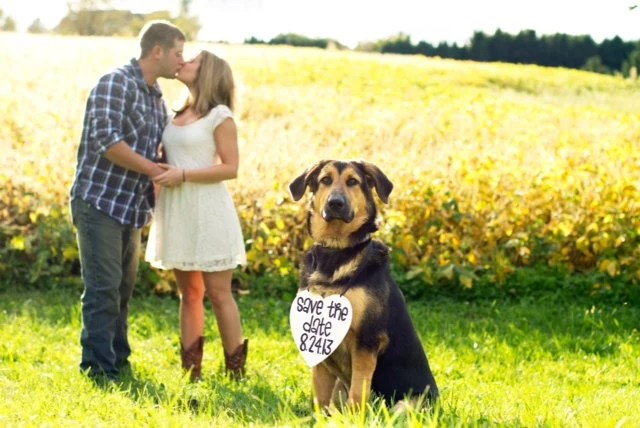 Save the Date Engagement Heart Sign With Date Photo Prop engagement photos, save the dates, unique photography prop, pet photo prop - yourethatgirldesigns
