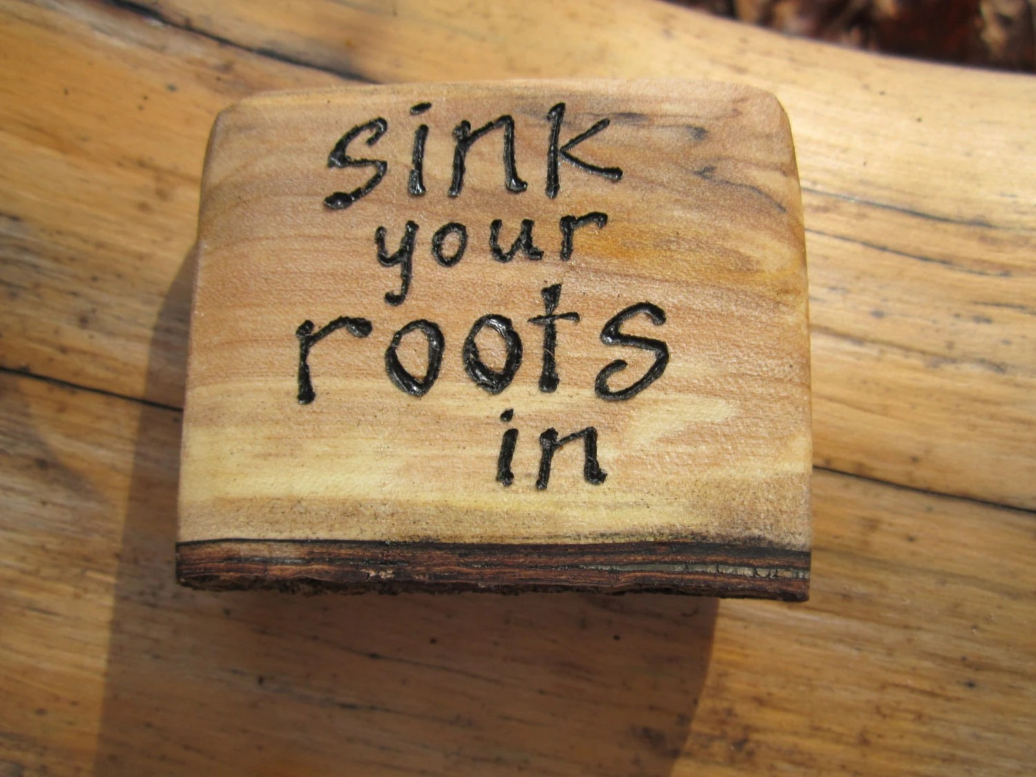 SALE- Inspirational Magnet- Wood Magnet- Sink your roots in- Carving