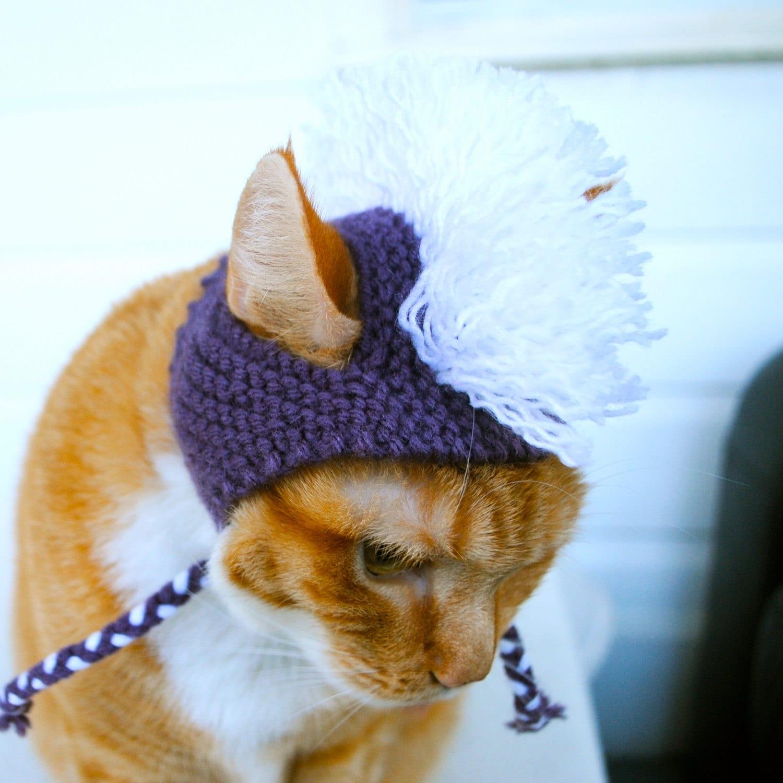 Cat with purple mohawk hat