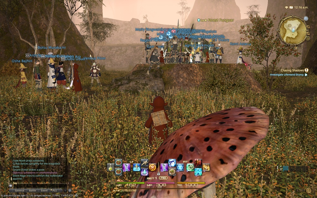 Thoughts on FFXIV: ARR – Week 1: MMO Release Woes