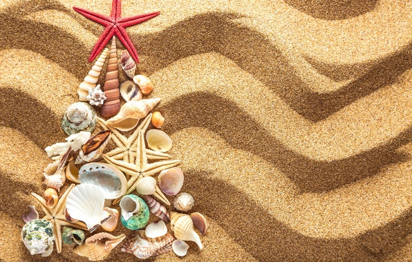 Wallpaper Sand Decoration Tree New Year Shell