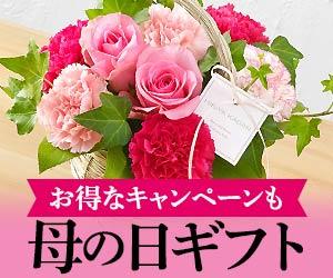 日比谷花壇 フラワーギフト 母の日 通販 2012