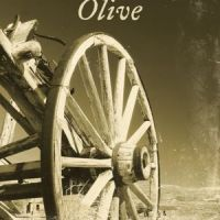 Charisma Media Network Blog Tour Review: Romancing Olive by Holly Bush