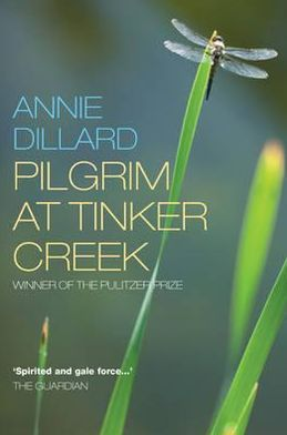 Image result for pilgrim at tinker creek