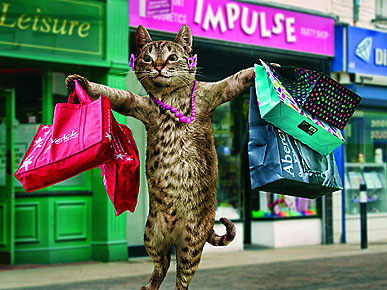 Image result for shopaholic funny
