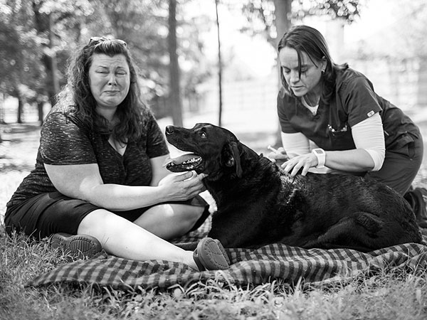 Photo Diary of Dog's Last Day Inspires Owners to Share Their Stories of Loving and Losing Pets| Animals & Pets, Dogs, Around the Web