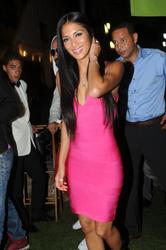 Nicole Scherzinger put on a performance at the VIP Room in St. Tropez - Hot Celebs Home
