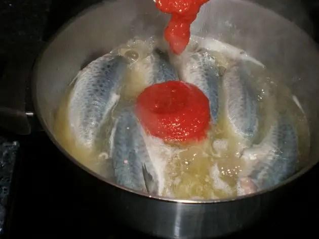 Caballas tomateavinadas
