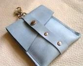 Light blue clip card case - ravenshold