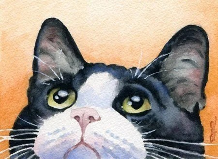 TUXEDO CAT Watercolor Signed Fine Art Print by Artist DJ Rogers