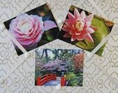 Garden Postcard Set- Six Postcard Set-Fine Art Photography - carensilvestri