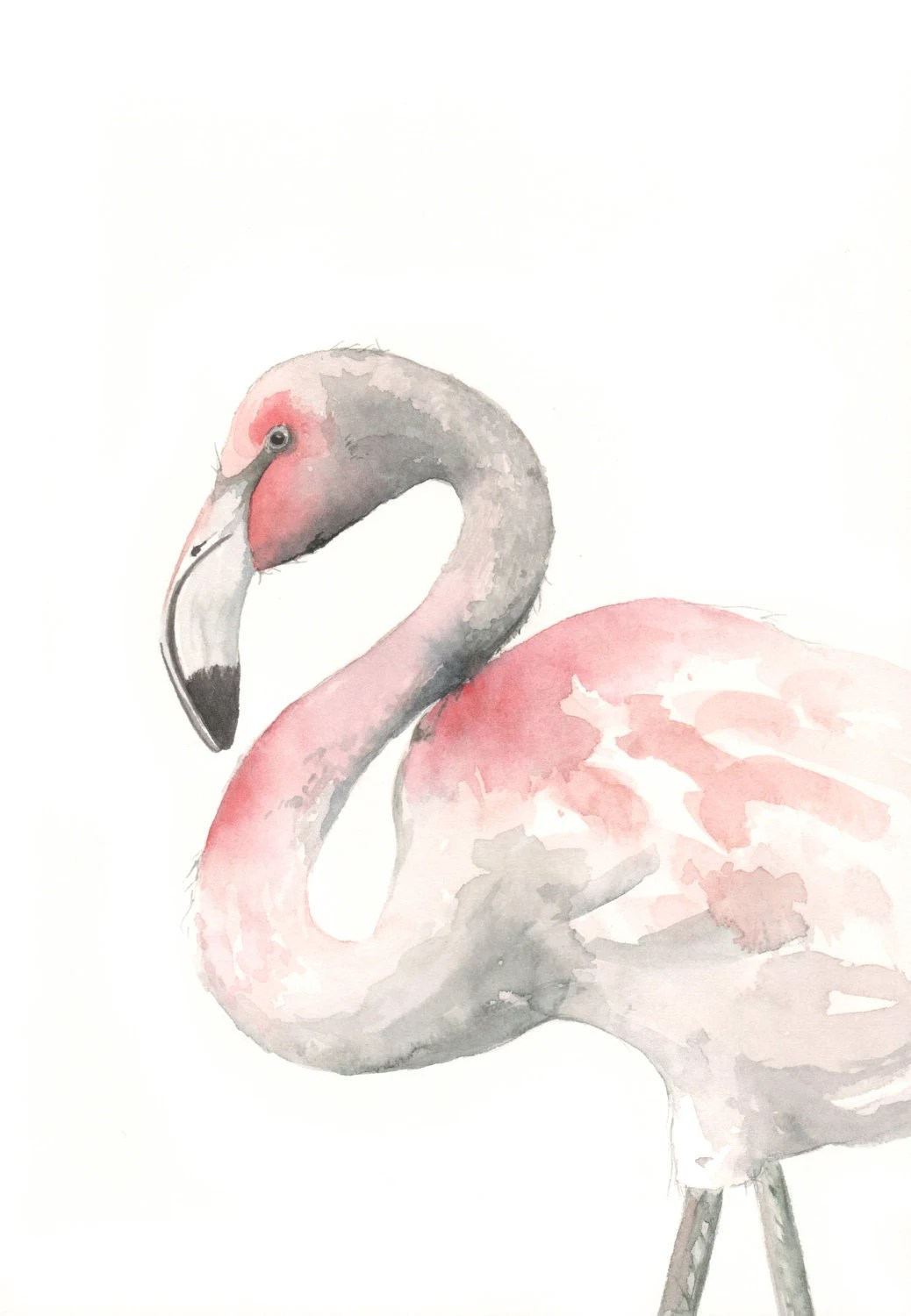 Flamingo Painting -F075 watercolor painting bird wildlife nature art pink - Archival print of watercolor painting 5 by 7 print - Splodgepodge