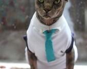 Cat shirt and tie/ Sphynx shirt - ekeka