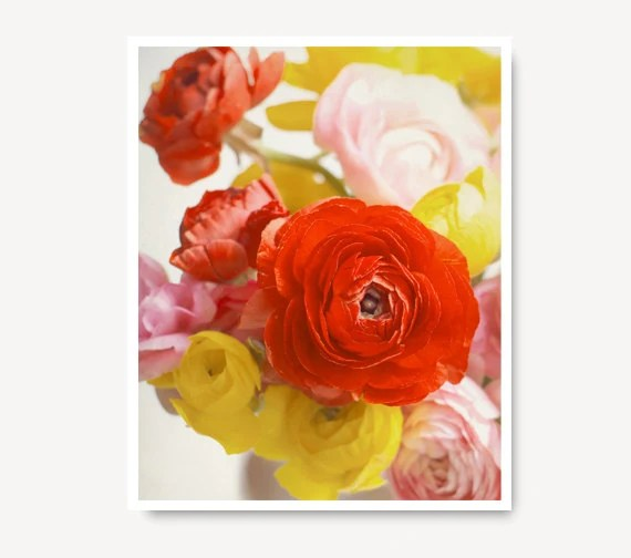Spring Flower photo,  yellow red pink ranunculus, flower print, nature print, colorful, spring decor, flower art, home decor - semisweetstudios