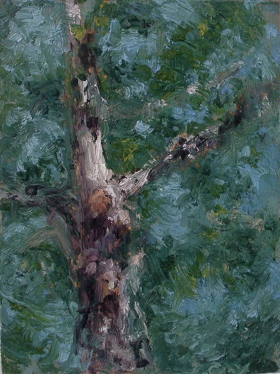 "Swinging leaves"" original oil landscape on canvas 6 x 8 inches"