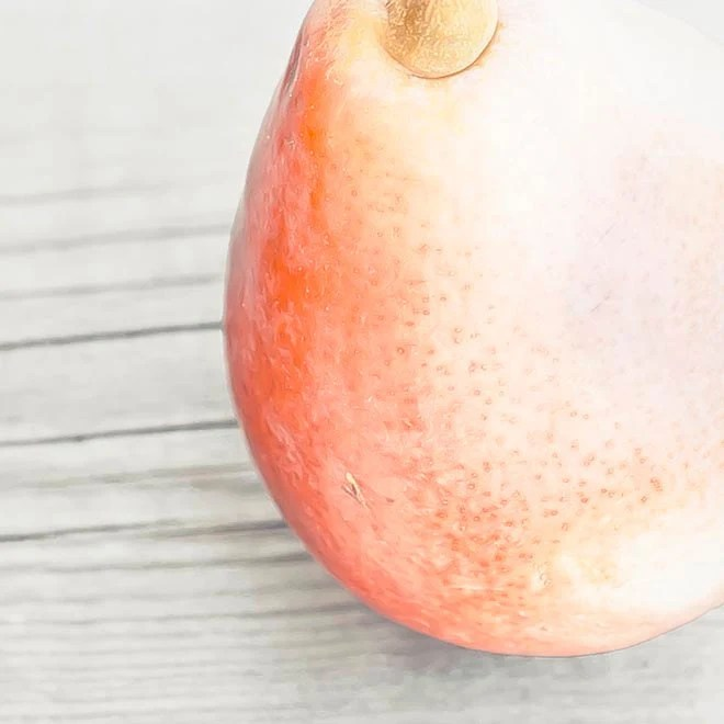 Harvest pear, rustic home decor by raceytay.etsy.com