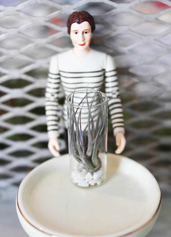 Miniature Vertical Terrarium with Real Plant// Dollhouse Modern Decor