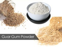 Guar Gum Powder Manufacturer in Baleshwar Odisha India by Sahoo ...