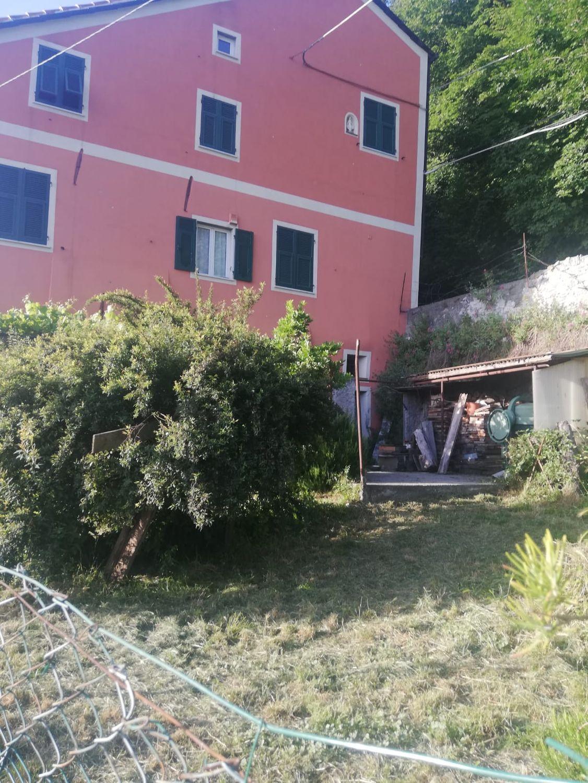 Casa Indipendente In Vendita In Via Ai Piani Di Fregoso 78