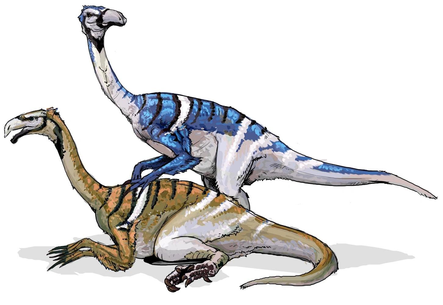 Nanshiungosaurus Dinosaur