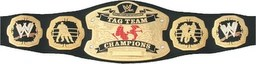 World_Tag_Team_Championship.png
