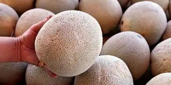 noticias muerte por melones