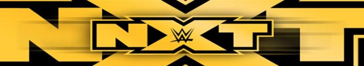 WWE NXT 2016 12 28 720p HEVC x265-MeGusta